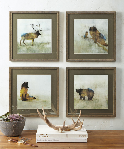 Forest Animal Wildlife Prints