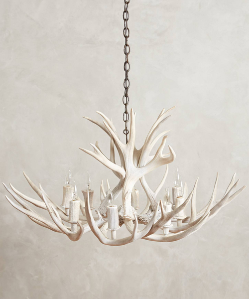 Shed Antler Lighting